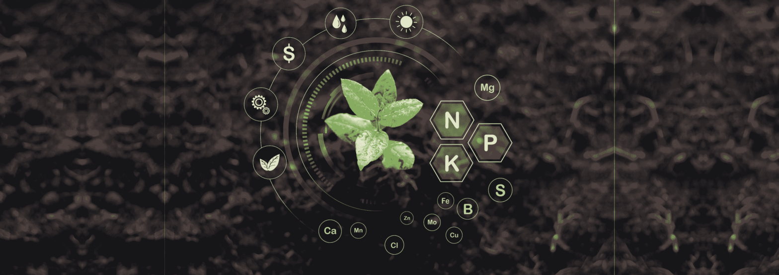 How Pace Wisdom Solution Helps in Agricultural Advancement through App Development